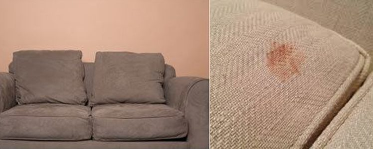 How To Clean Vomit From Upholstery?